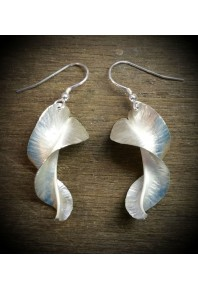 Folded Silver Twisted Shell Earrings