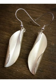 Shell Silver Medium Earrings
